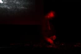 Oorchach, Nov 2013, Photo: Jen Iker